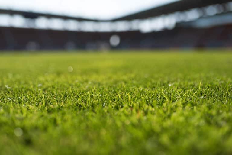 Grass at an empty at Football Stadium